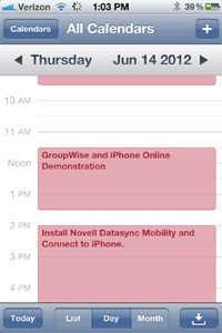 GroupWise Calendar on iPhone
