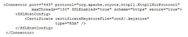 Default Apache Tomcat server.xml file using NIO Directive